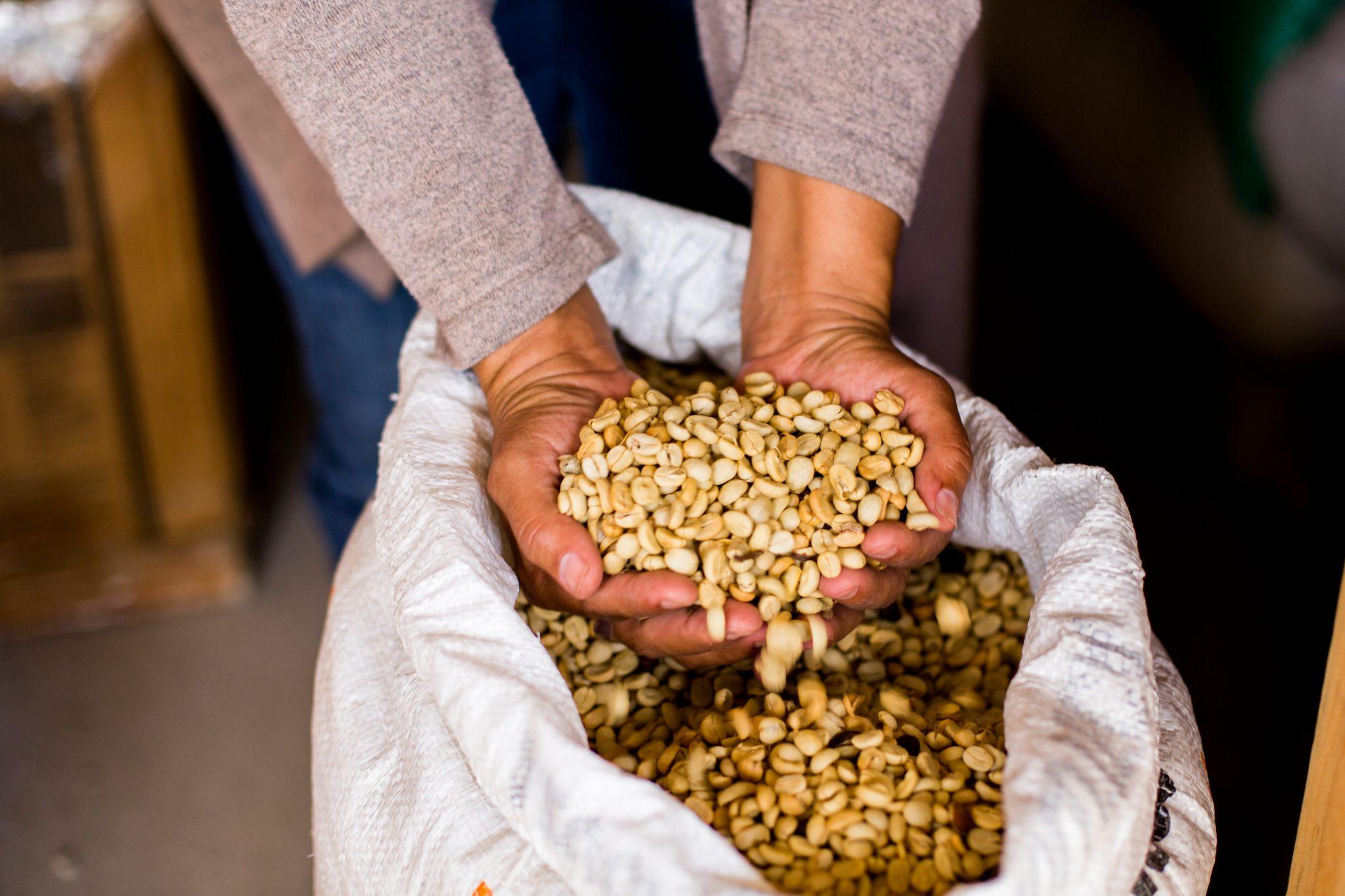 Fair Vs. Direct Trade Coffee